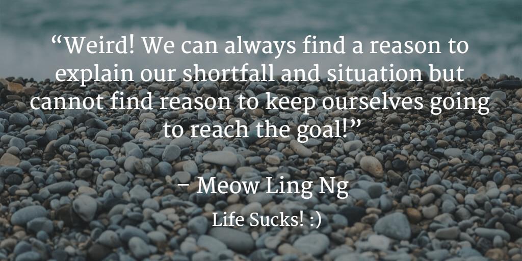 Finding Reason. Meow Ling Ng, Life Sucks!