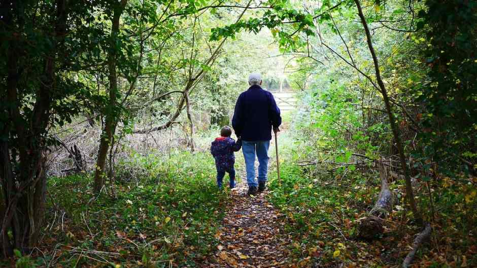 Grandpa and grandchild walking in woods