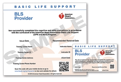 Basic Life Support Bls Course Completion Ecard 2015 Lifetek Inc
