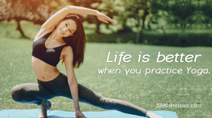 Newbie Yoga