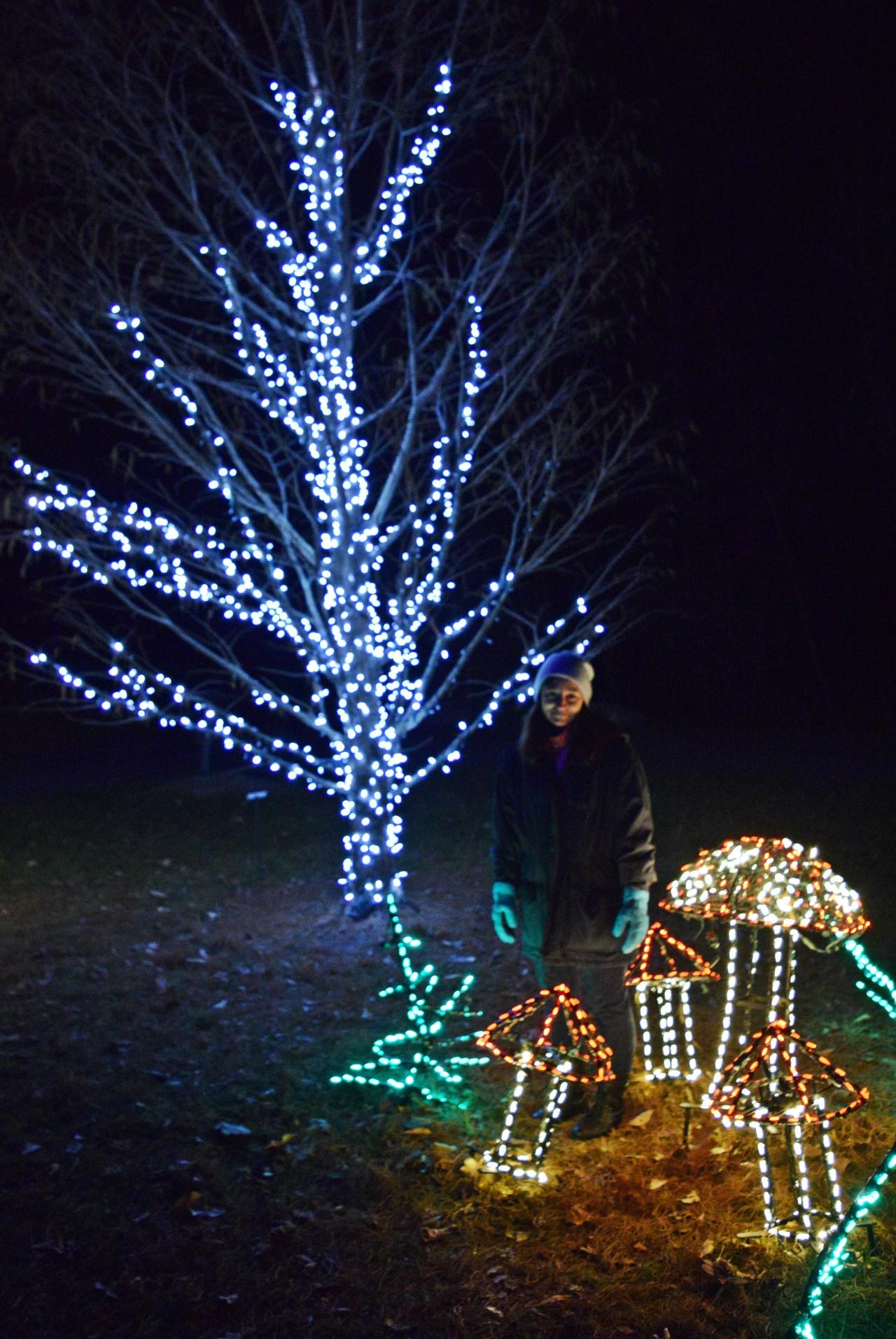 garden of lights life