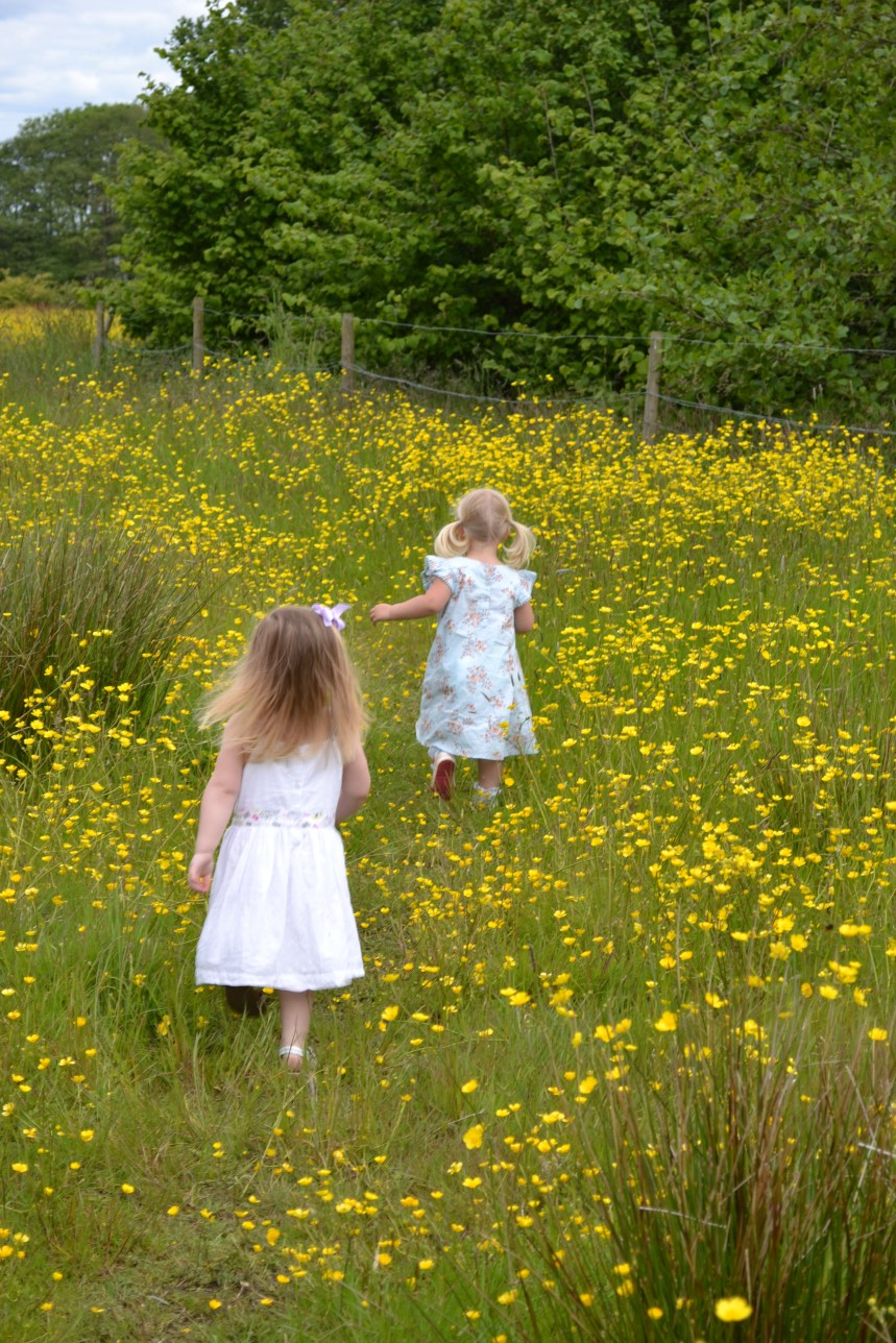 Buttercups, Daisy's and my camera