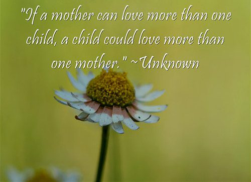 Graphic with this unknown quote: If a mother can love more than one child, a child could love more than one mother
