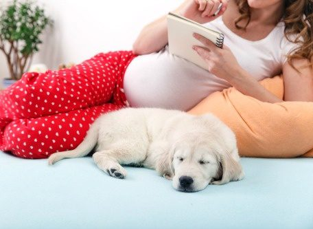 Pregnant woman writes in a journal as she lounges on her bed with her dog