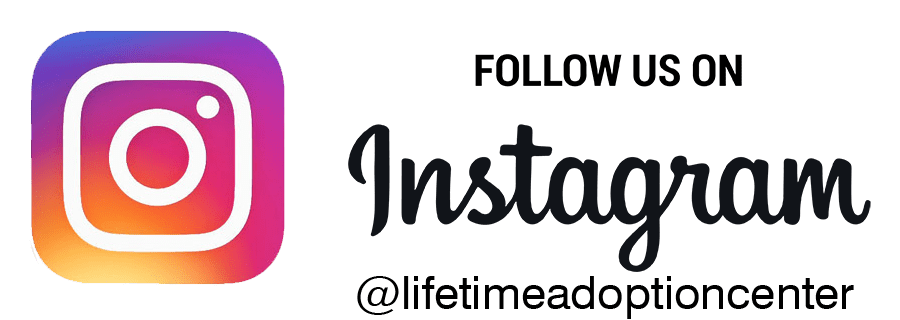 Follow-us-on-Instagram-transparent-1.png