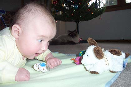 baby lies on stomach on blanket looking at stuffed toy while cat in distance looks on