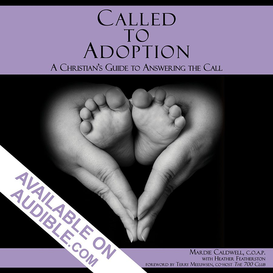 called_to_adoption_cover_audible_banner_6x6.jpg
