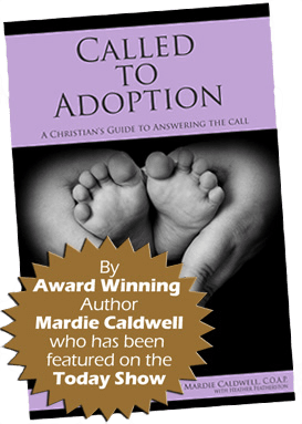Called to Adoption Book
