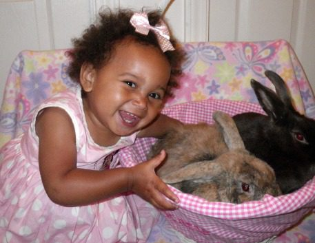 katie bunnies.jpg