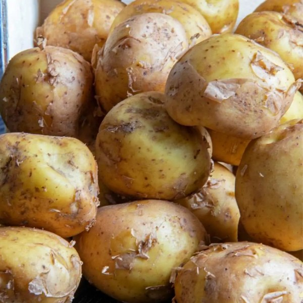 Thanksgiving Potato Extraordinaire -La Bonnotte