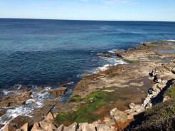 A look down the coast