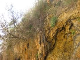 Lots of erosion...