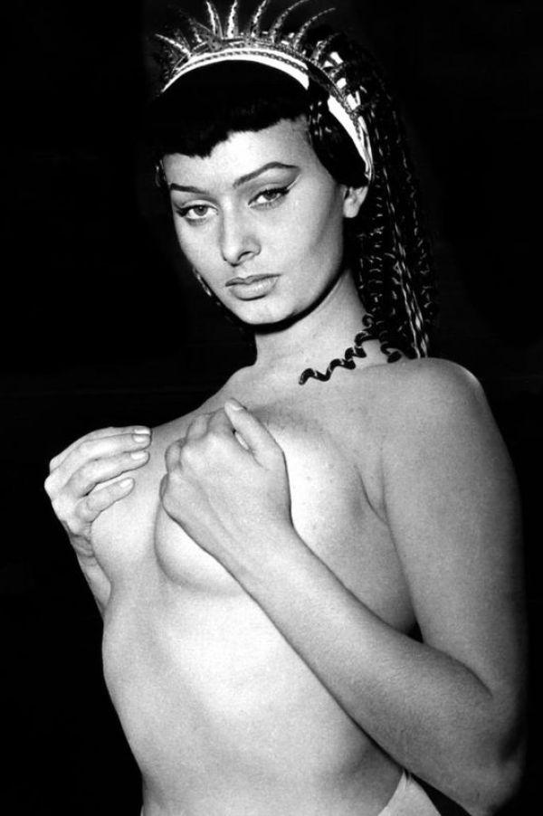 Sexy Sophia Loren 104