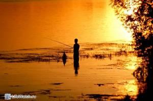 Рыбак. Лето 2010. Москва река