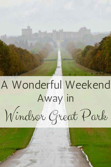 Looking for a Getaway from London, England? Consider a weekend in Windsor Great Park! A truly stunning place that houses Windsor Castle (and hundreds of deer)