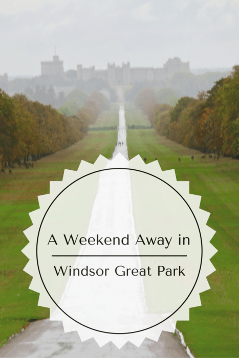 weekend-in-windsor-great-park