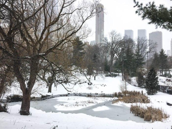 central park snow views