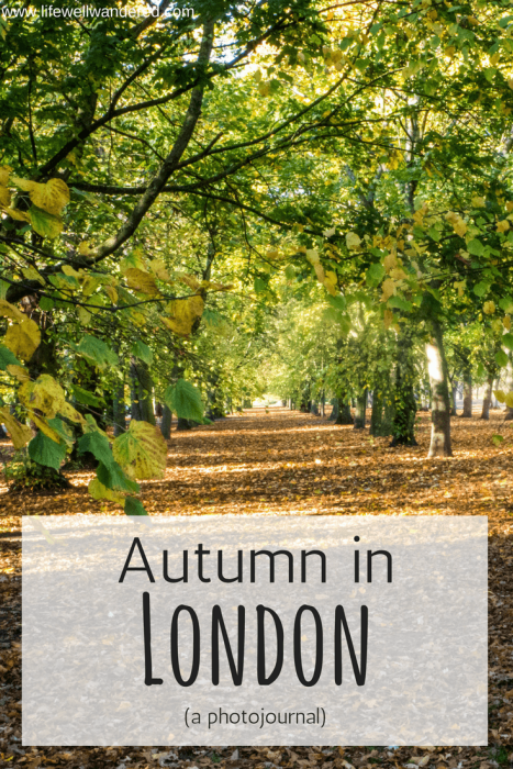 Autumn in London, England is stunning. Looking for something to tempt you to visit London in the fall? Look no further.