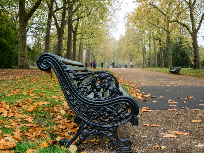 st james park london autumn