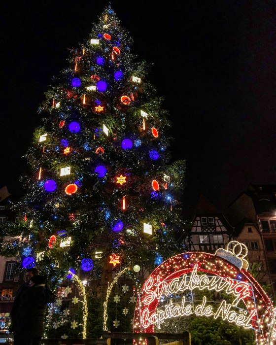 image du grand sapin de noël de strasbourg - photo of the strasbourg christmas tree