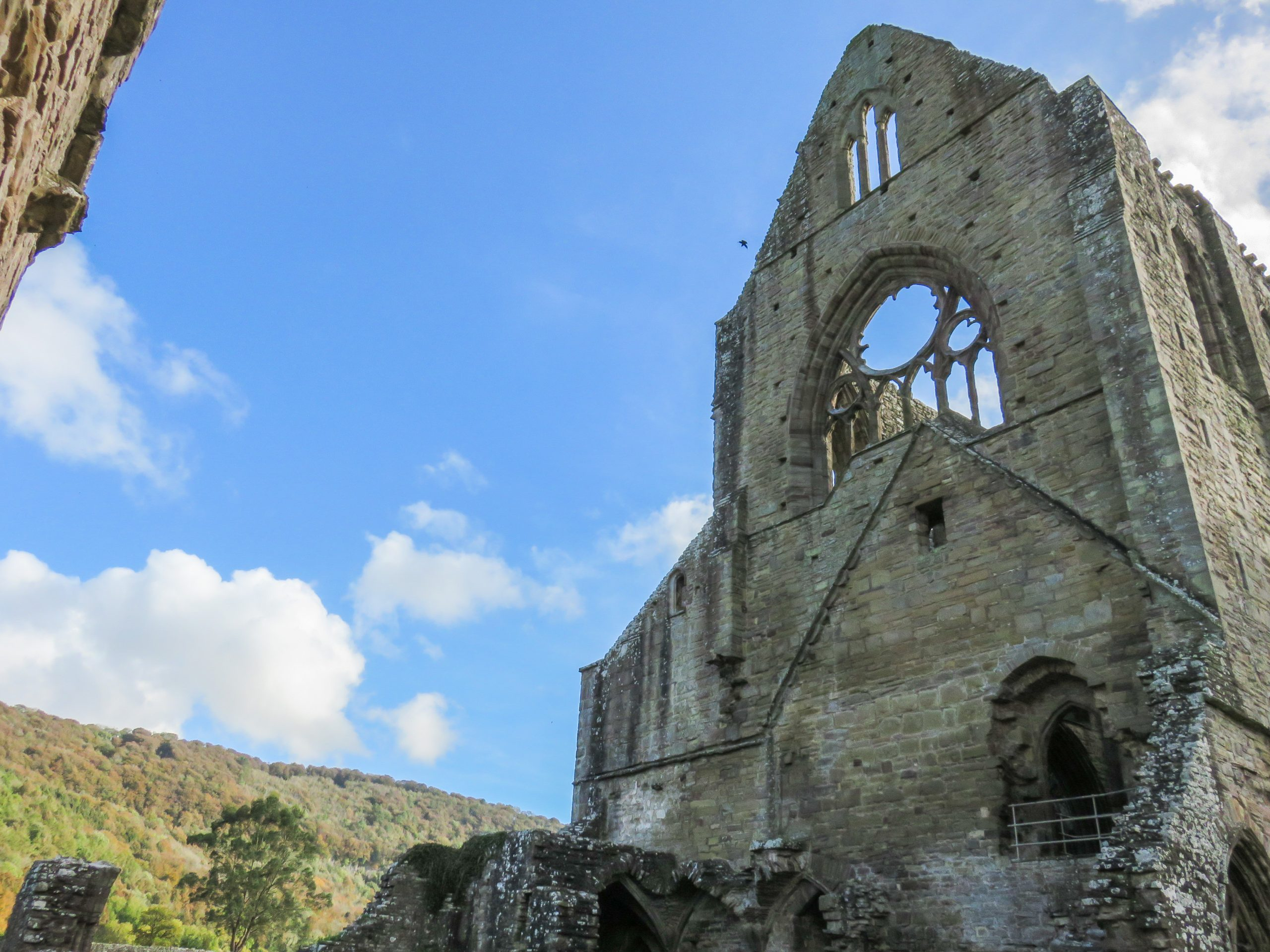 exterior image of tintern abbey looking up to top of abbey