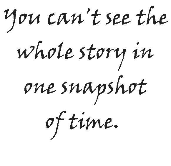 whole story.onesnapshot