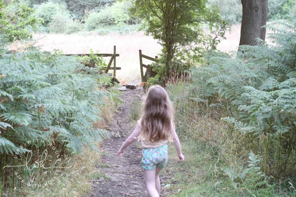 Summer Walks - Life with Holly