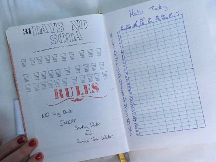 31 day challenge and habit tracking