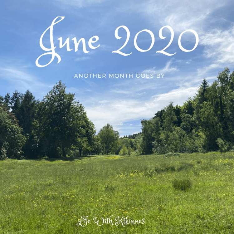 """An empty field in south Belfast, sun shining through the clouds, and the words """"June 2020"""" in black cursive writing top centre"""