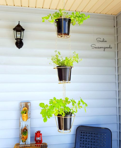 Lampshades Repurposed into Hanging Herb Baskets - Sadie Seasongoods - HMLP 89 - Feature