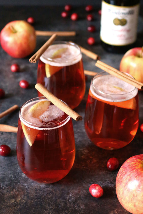 Apple Cinnamon Cranberry Mimosa {Fauxmosa} - Honey and Birch - HMLP 113 Feature