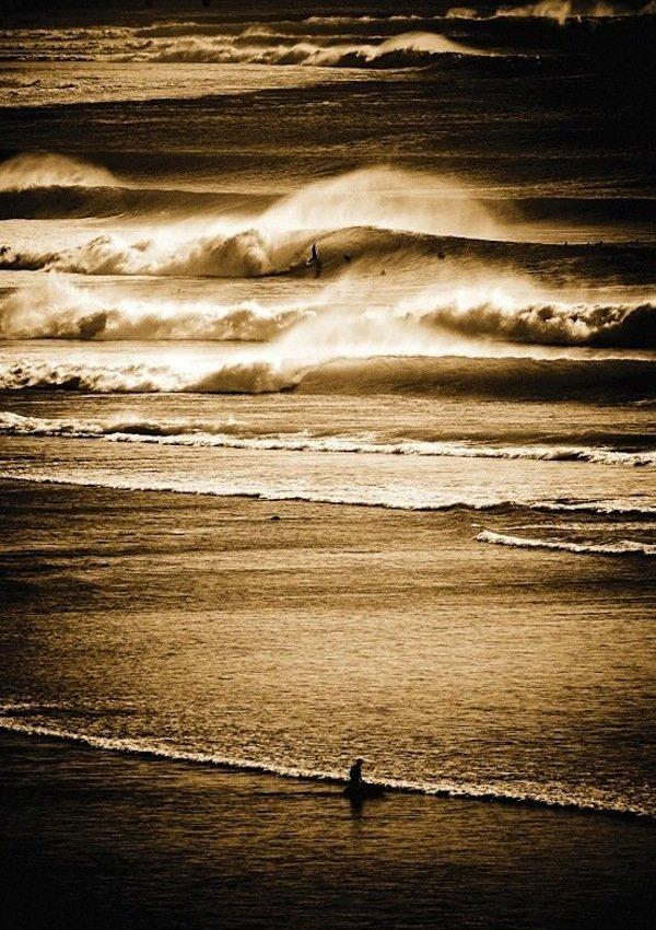Jetset: Gold Coast, Australia