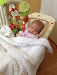 Fisher-Price Woodsy Friends Comfy Time Bouncer Review ...