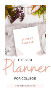 the best planner for college