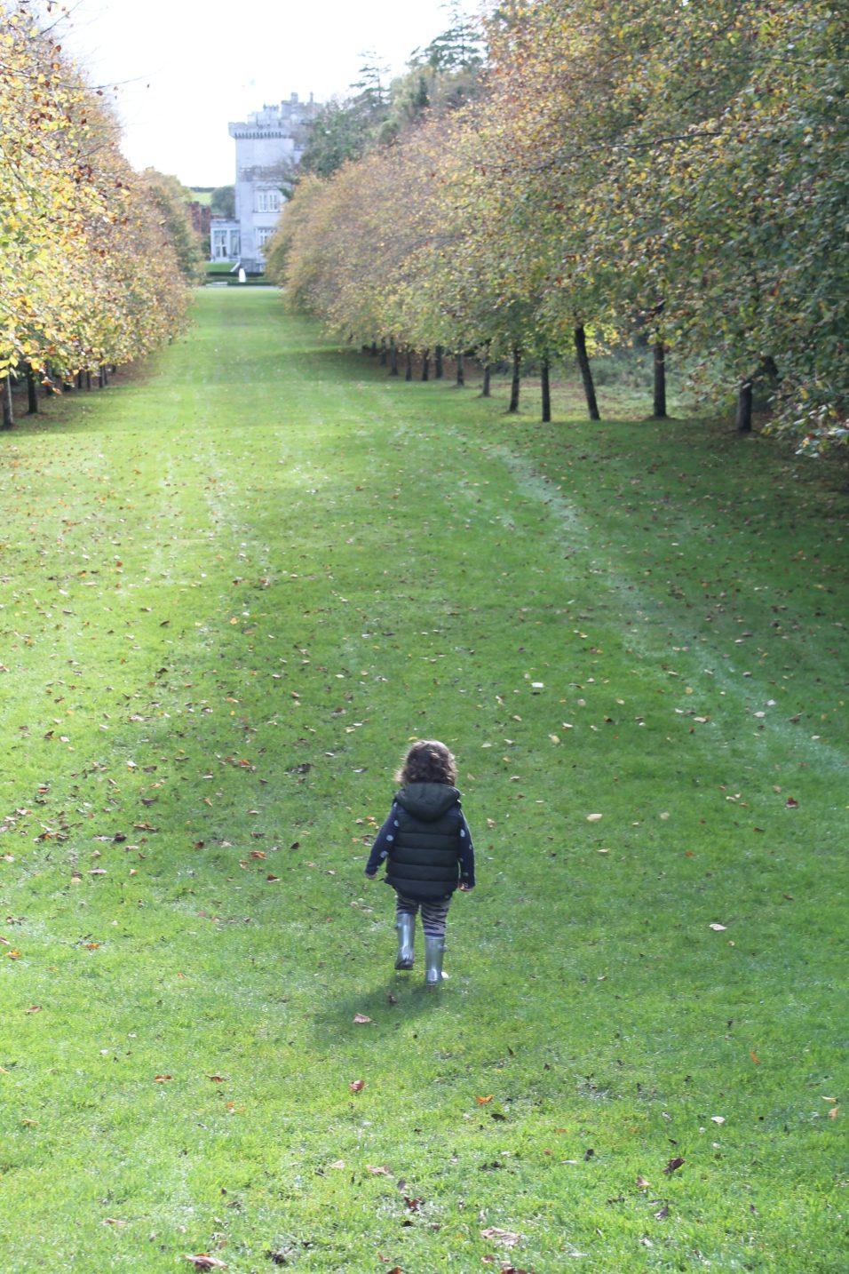 Dromoland Walk