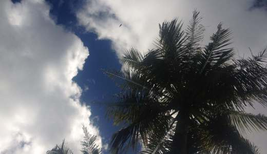 英語が喋れないけどグアムに旅行してみた。初の海外旅行で英語は必要なのか?実際のお勧め観光地や治安を紹介