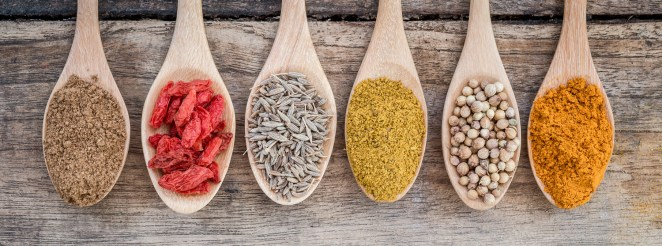 spices elements doshas food