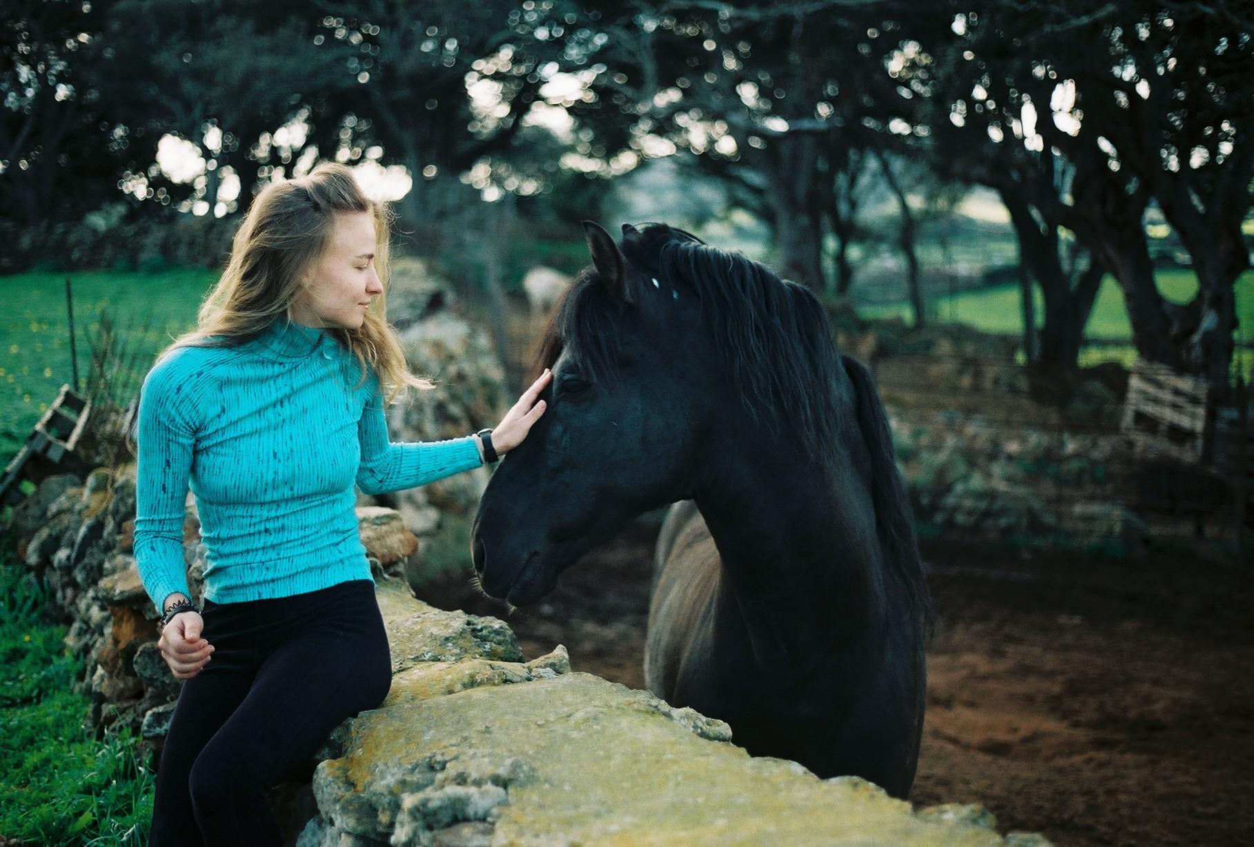 menorca, horse, nature