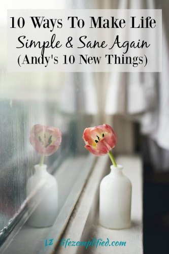10 Ways To Make Life Simple & Sane Again (Andy's 10 New Things) - Everyone loves Andy, but the most important thing was that she learned to love herself.