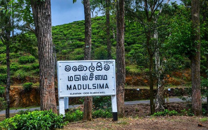 What is modolsima in sri lanka