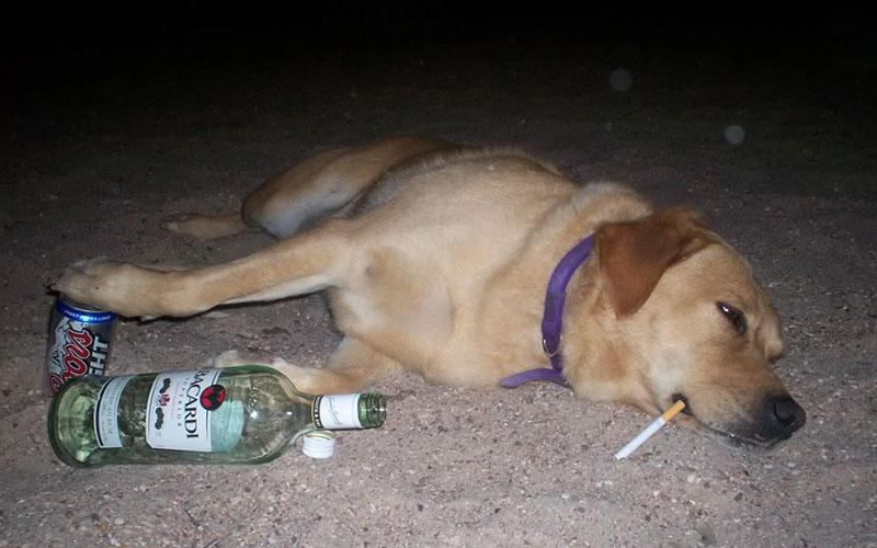 Keep in mind when get drunk