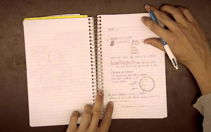 siblings study