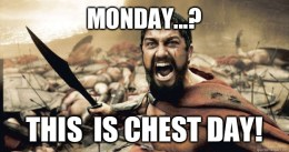 chest-day-2