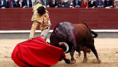 صورة إسبانيا: وزارة الثقافة تفتح الباب أمام مصارعة الثيران والمهرجانات الصيفية لتحسين أوضاعها أثناء عملية إلغاء الافتتاح