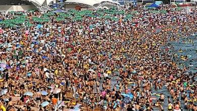 صورة المجلس الأعلى للبحث العلمي الاسباني يدرس ويعد بروتوكولات إجراءات لفتح الشواطئ وحمامات السباحة