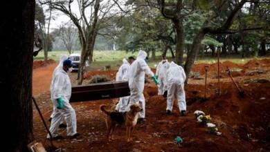 صورة البرازيل سجلت لأول مرة أكثر من ألف حالة وفاة بفيروس كورونا في يوم واحد