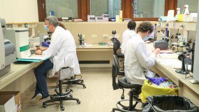 صورة بلجيكا وهولندا تكتشف حالات متوافقة مع التوقعات العلمية لإعادة الإصابة بفيروس كورونا مثل هونج كونج