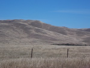 Hills barren of trees in the Omeo Valley