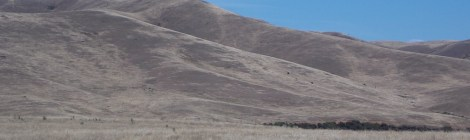 Hills barren of trees in the Omeo Valley of the