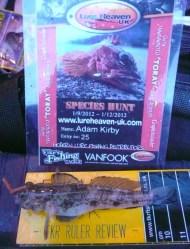 Black Goby for Species Hunt